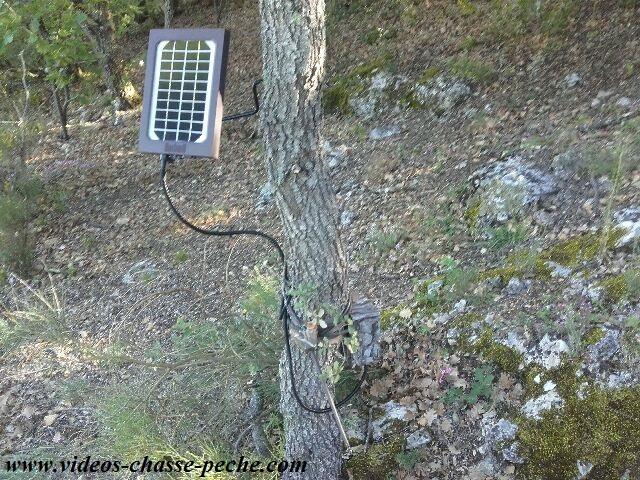 Panneau solaire pour Trophy Cam Aggressor