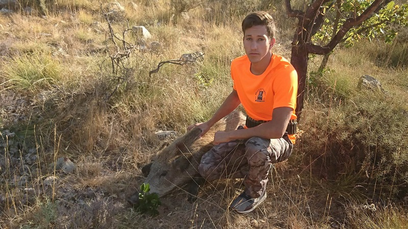 Chasse au sanglier 2017 2018