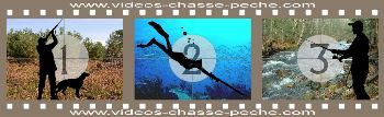 videos-chasse-peche.com - Vid�os chasse, chasse sous marine, p�che et tests mat�riel