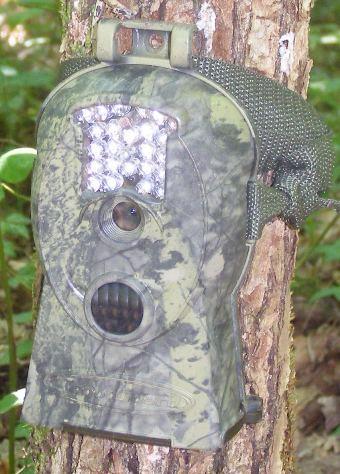 ScoutGuard SG 570 - Piège vidéo et photo