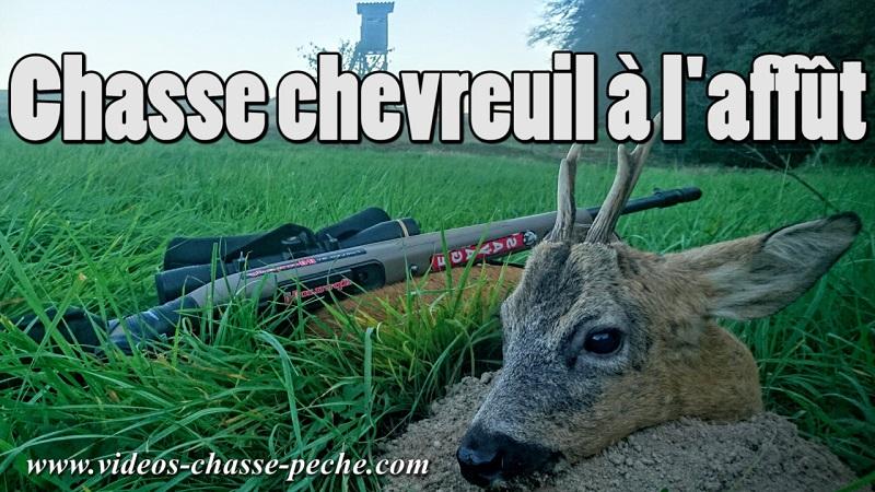 chasse chevreuil