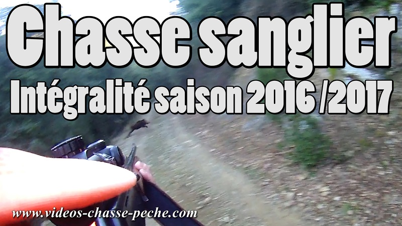 Chasse sanglier 2016 2017