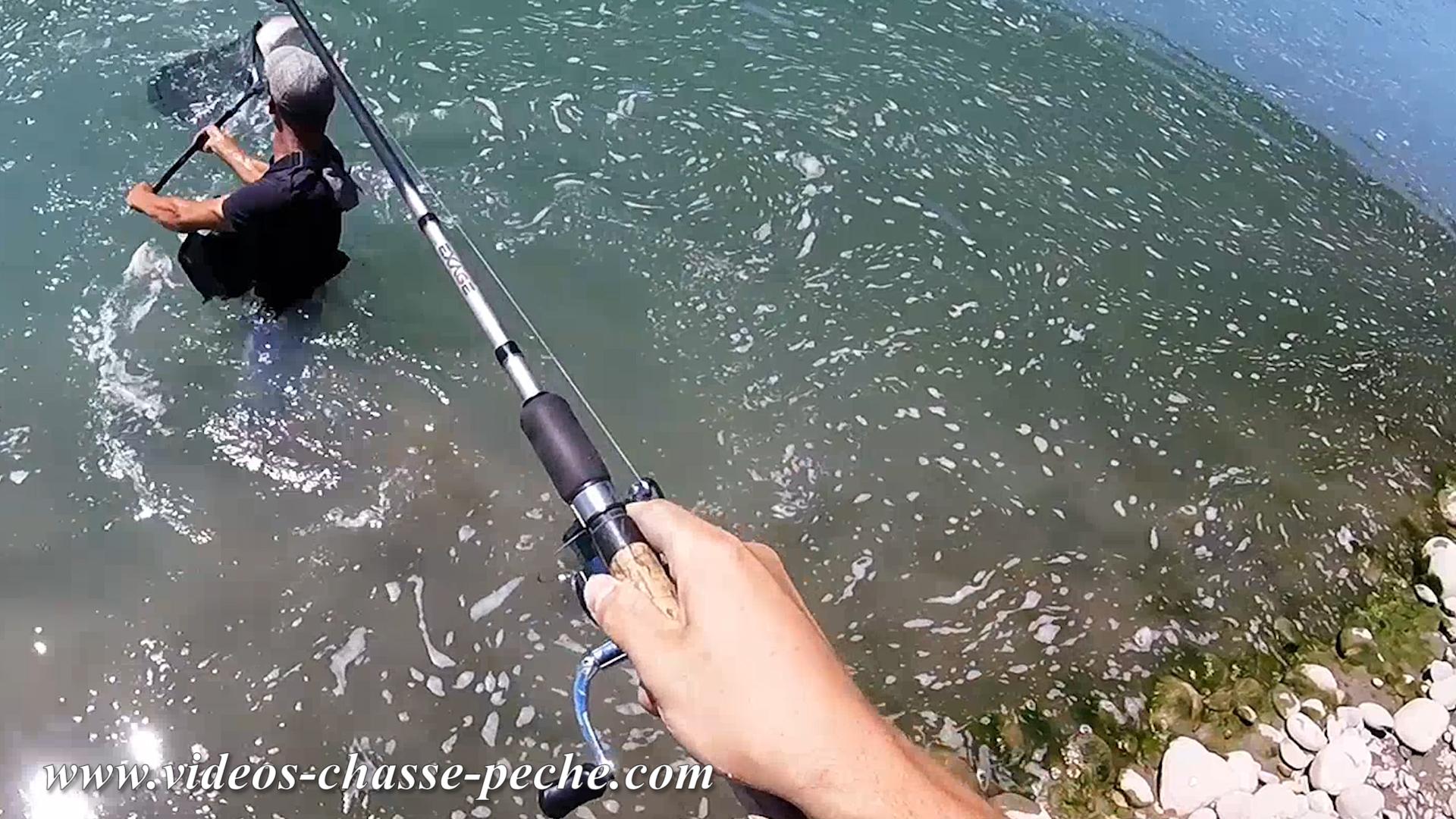 Pêche brochet